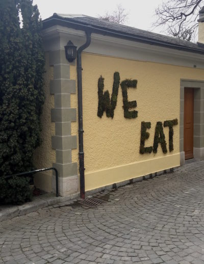 We Sleep-We Eat