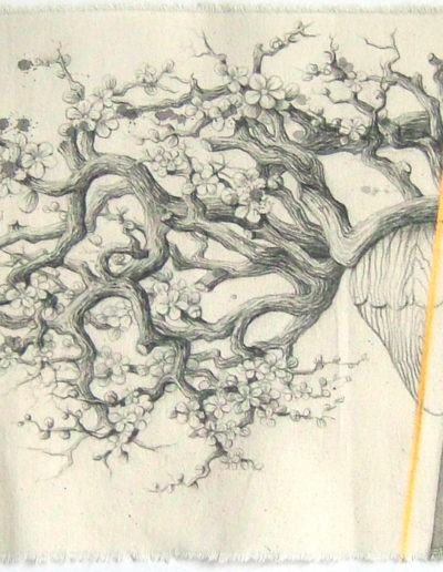 COEUR BOIS, 25 x 47 cm