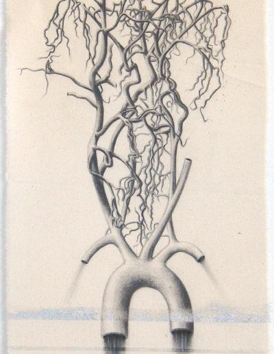 COEUR-TETE, 54 x 30 cm