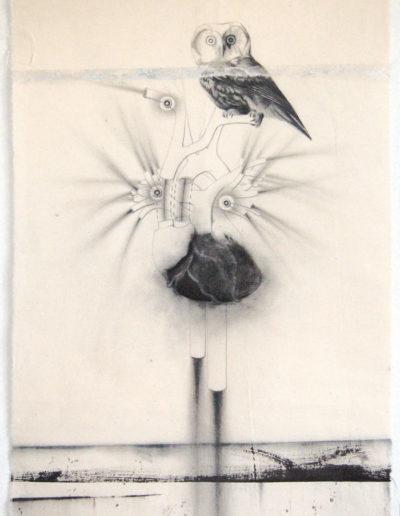 HIBOU  75 x 50 cm.