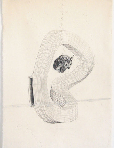 FAON, 71 x 50 cm